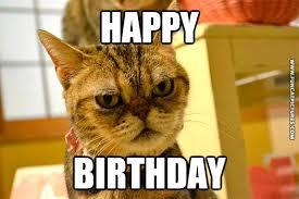 Funny Cat Birthday Meme - when my cat celebrates me fun cat pictures