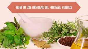 how to use oregano oil for nail fungus