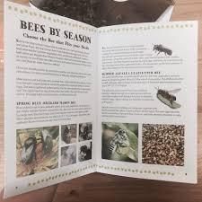 the ultimate beginner u0027s beekeeping kit new hobby box
