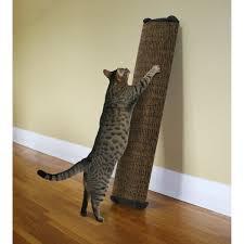 cat posts costco