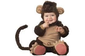 halloween animals costumes spooktacular halloween costumes for babies toddlers and the big