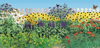 how to plant a butterfly garden the high country gardens