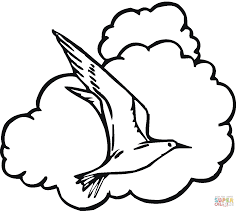 seagull in the sky coloring page free printable coloring pages