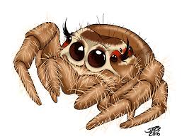 cute jumping spider by prodigyduck on deviantart awesome tattoo