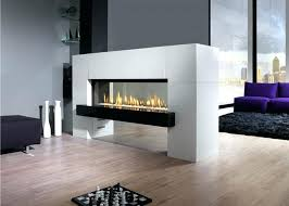 Natural Gas Fireplaces Direct Vent by Gas Fireplace Interior Wall Napoleon Vector Direct Vent Gas