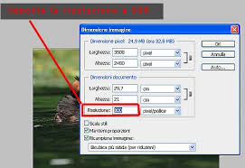 prova stampa photoshop download
