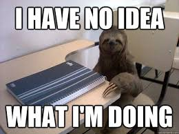 I Have No Idea What Im Doing Meme - i have no idea what i m doing sloth student quickmeme