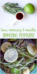 potpourri best 25 potpourri ideas on pinterest stove top potpourri