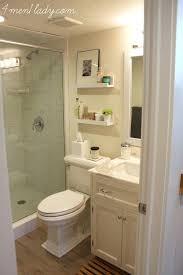 Basement Bathroom Renovation Ideas Small Basement Bathroom Ideas Alexwomack Me