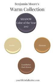 benjamin moore 2017 colors 40 best shadow benjamin moore 2017 color of the year images on