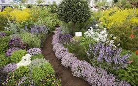 herb garden design 1000 ideas about herb garden design on