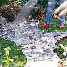 ditch the digging with this easy newspaper garden sites of