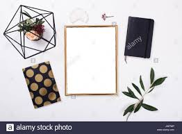 Plant Home Decor by Golden Frame Mock Up On White Tabletop Background Home Decor