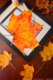 Decorating With Fall Leaves - 35 best fun with leaves and flowers images on pinterest fall
