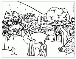 forest and animals drawing line drawing of sketch