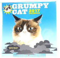 Grumpy Cat Mini Wall Calendar - playboy 2017 playmate wall calendar 11 x 14 free shipping