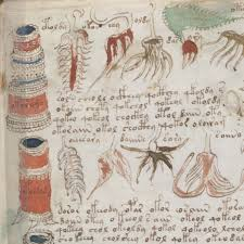 the voynich manuscript is an illustrated codex hand written in an