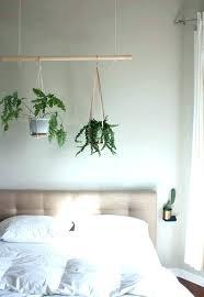 best plants for bedroom plants in bedroom ideas mt4robots info