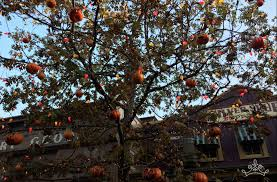 halloween trees the halloween tree duchess of disneyland