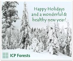 happy holidays a wonderful new year 2018 icp forests