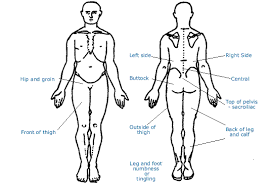 lower back symptom checker