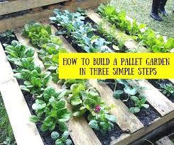 Gardening Ideas Pinterest Design Best 25 Pallet Gardening Ideas On Pinterest Of Pallet