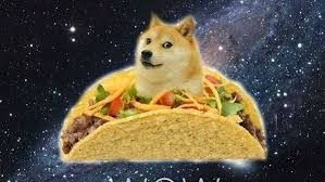 Doge Meme Tumblr - doge is wow tumblr
