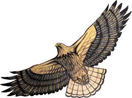 red tailed hawk clipart hawk flying pencil and in color red