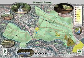 Geocache Map Gc5yprj Karura Forest 36 Ruaka River Swamp Traditional Cache