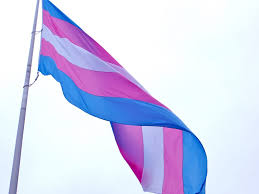 Back Of Oregon State Flag Oregon Governor Signs Transgender Equity Bill Into Law Pbs Newshour