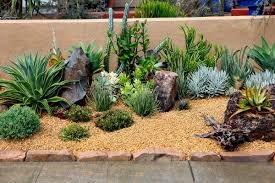 Front And Backyard Landscaping Ideas Desert Landscaping Ideas U2013 Basic Rules To Design A Great Backyard