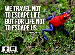 7 best Travel Quotes images on Pinterest