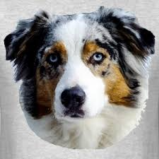 australian shepherd gifts shop retarded australian shepherd gifts online spreadshirt