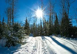 Minnesota nature activities images 18 fun minnesota winter activities and holiday festivals for kids jpg