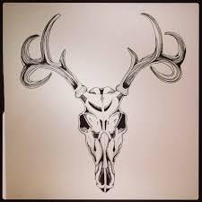 best 25 deer skull drawing ideas on pinterest animal skull