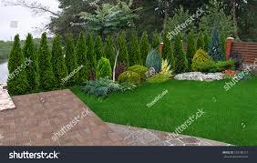 garden design garden design with landscaping evergreen privacy