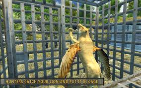 flying lion wild simulator android apps on google play