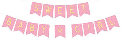 baby shower banner baby shower decorations for girl pastel pink sweet