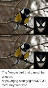 9gag Memes - the venom bird that cannot be unseen https9gagcomgagabmzzvoscfunny