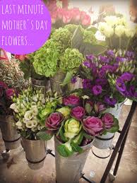 Mother S Day Flower V I Buys Last Minute Mothers Day Flowers U2026 For Less Mamas V I B