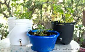 Self Watering Self Watering Planter Simple Practical Beautiful