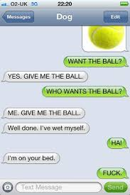 Dog Text Memes - 9 best dog texts images on pinterest funny stuff ha ha and
