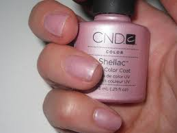 what is shellac