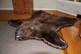 How Much Does A Bear Rug Cost Grizzly Bear Taxidermy Rug Mount For Sale The Taxidermy Store
