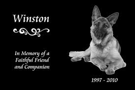 dog memorial pet memorials granite dog wheelchairs dog carts handicapped