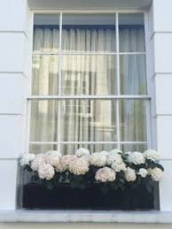 Metal Window Boxes For Plants - google image result for http www londonplanters co uk newimages
