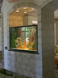 Home Design Decor Shopping Wish Best 25 Home Aquarium Ideas On Pinterest Amazing Fish Tanks