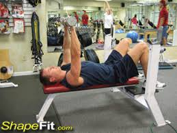 Bench Exercises With Dumbbells Flat Bench Dumbbell Press Chest Exercise Guide With Photos