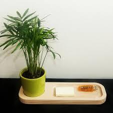 plantes pour bureau plateau bois avec plante au bureau objet publicitaire nature