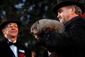 groundhog day is the dumbest american holiday for the win